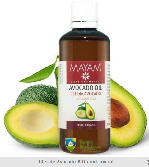 puterea plantelor avocado